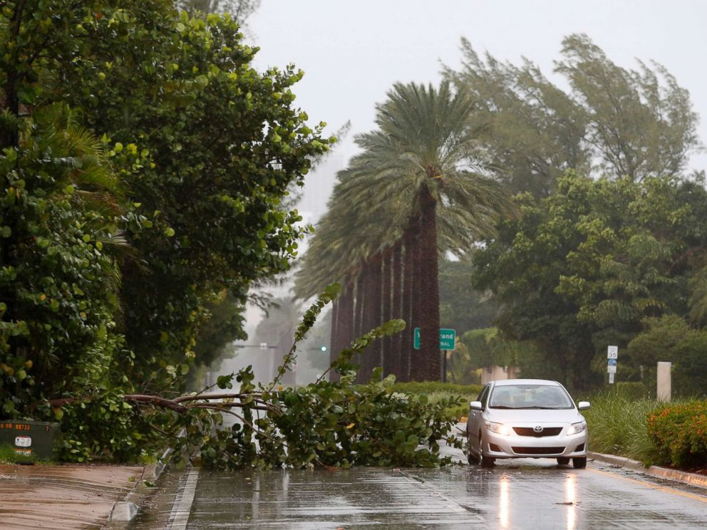 PHOTO: A car drives around a tree downed by winds from Hurricane Irma, Sept. 9, 2017, in Golden Beach, Fla.