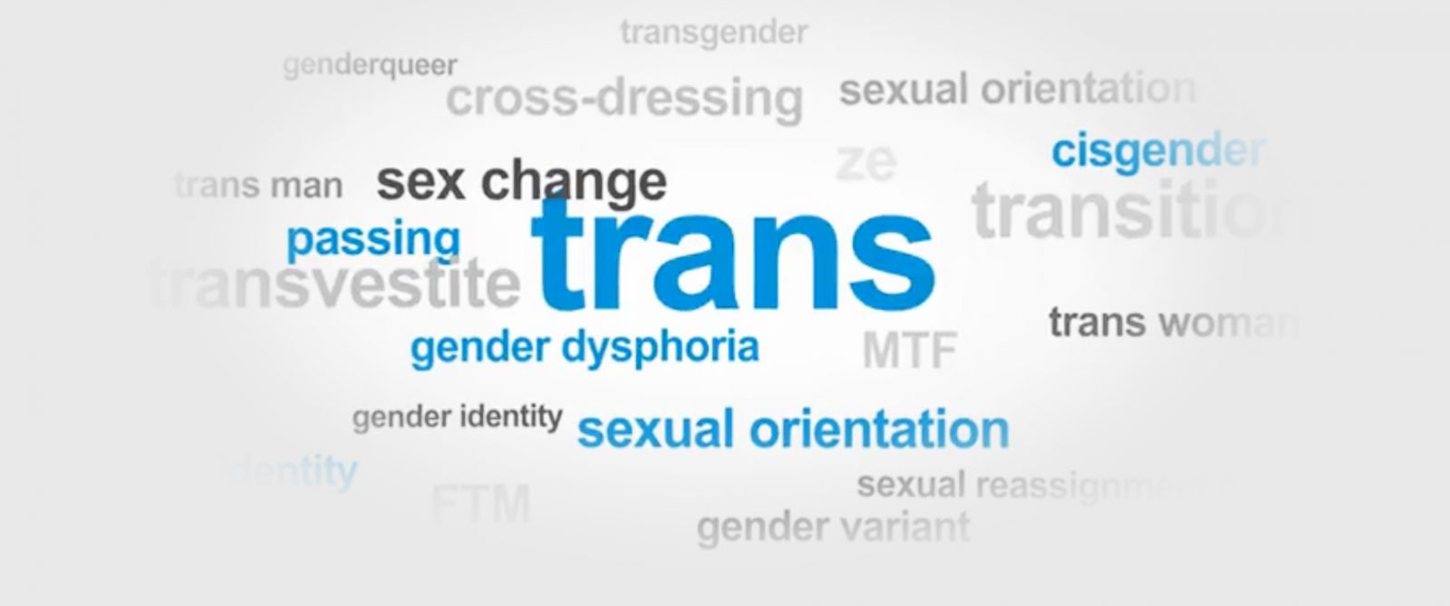 Words we use to describe gender and sexuality - ABC News
