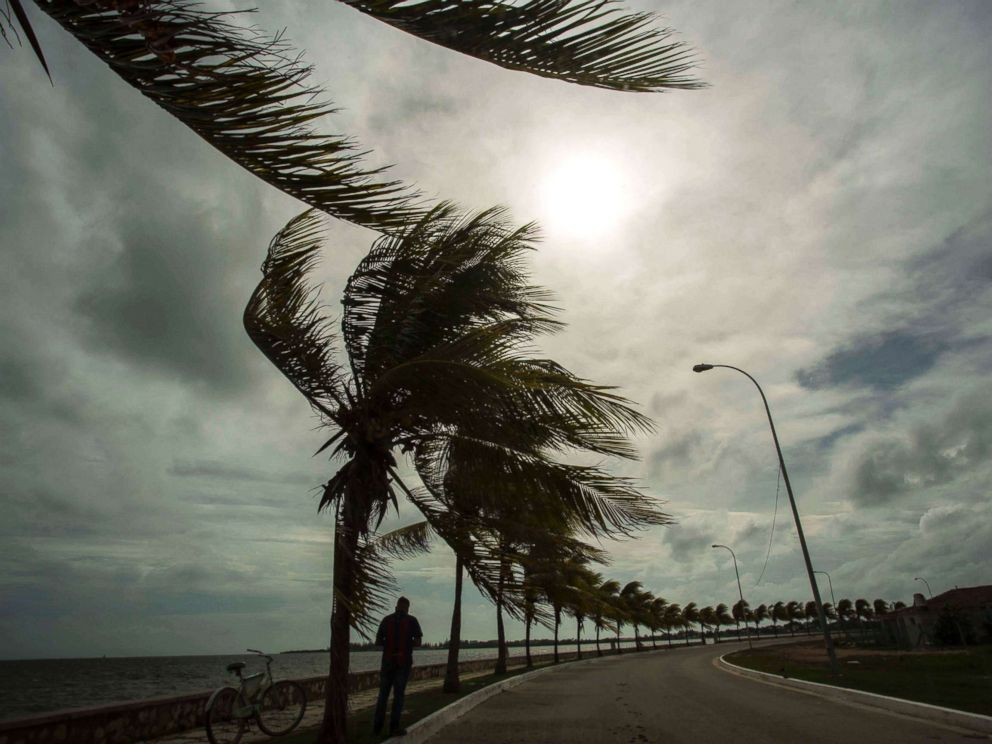 PHOTO: Winds brought by Hurricane Irma blow palm trees lining the seawall in Cuba, Sept. 8, 2017.