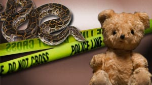 Photo: Officials: Escaped 12-foot pet python strangled 2-year-old girl in Fla. home