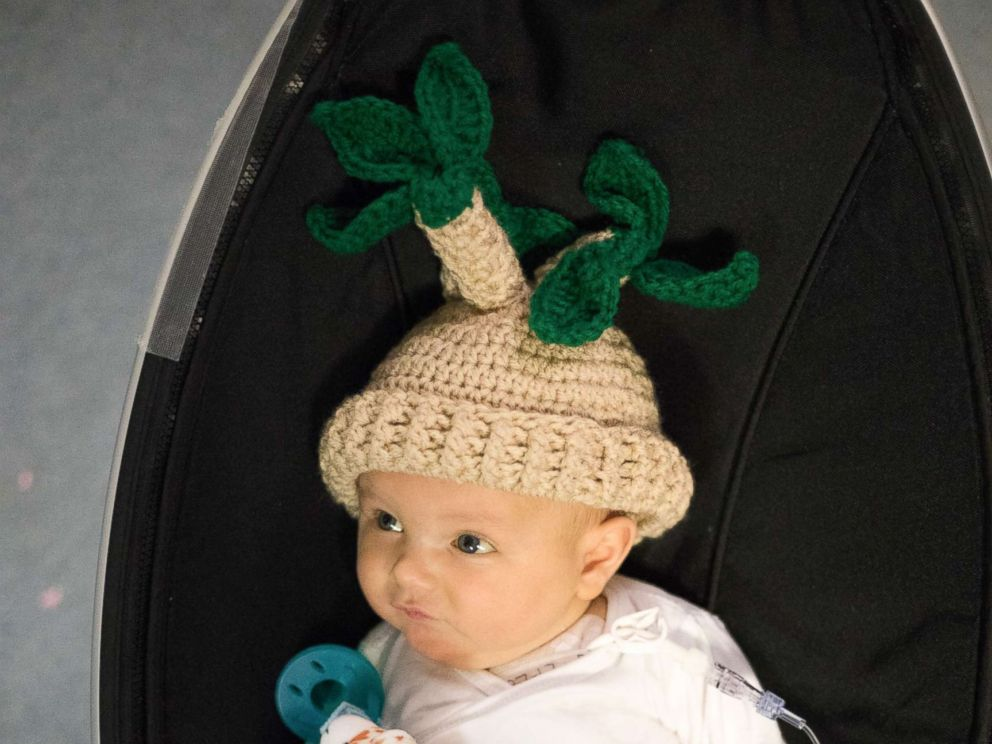 PHOTO: Fankhausers knitted designs inspired by Pinterest for Grant who is dressed as a potted plant for Halloween.