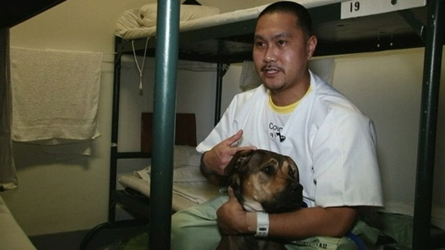 VIDEO: Program teaches inmates at the Los Angeles County Mens Central Jail to train rescue dogs.
