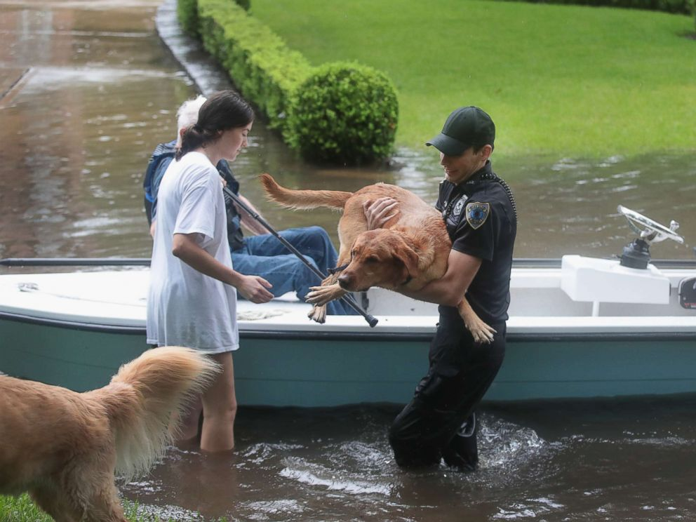 pet-rescue-hurricane-harvey-gty-mem-170828_4x3_992.jpg