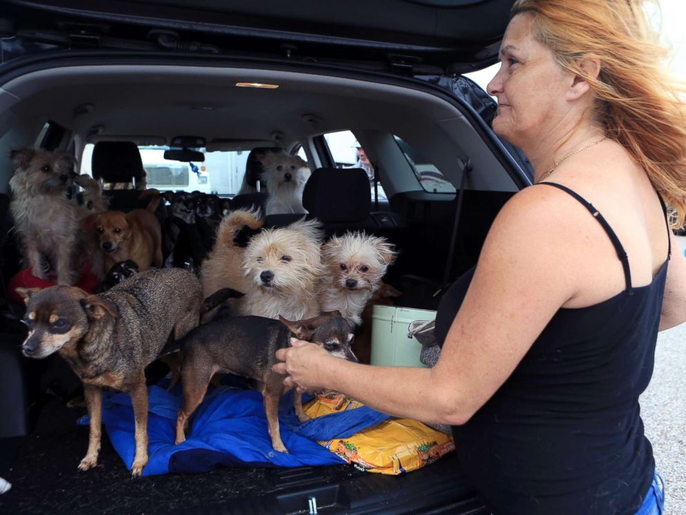 PHOTO: Pamela Hyatt of Rockport with her dogs after Hurricane Harvey devastated the Coastal city, Aug. 27, 2017, in Rockport, Tx.