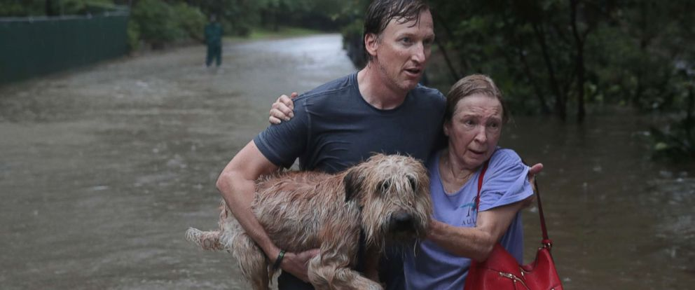 pet-rescue-hurricane-harvey2-gty-mem-170828_12x5_992.jpg