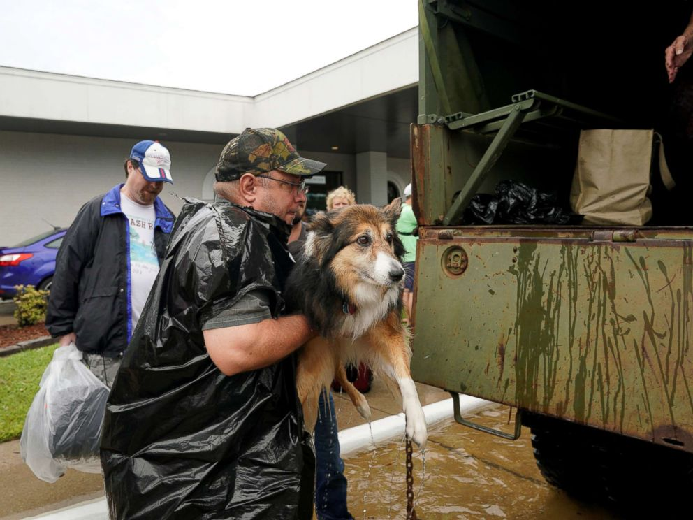 PHOTO: Volunteers load pets into a collectors vintage military truck to evacuate them from flood waters from Hurricane Harvey in Dickinson, Texas, Aug. 27, 2017.