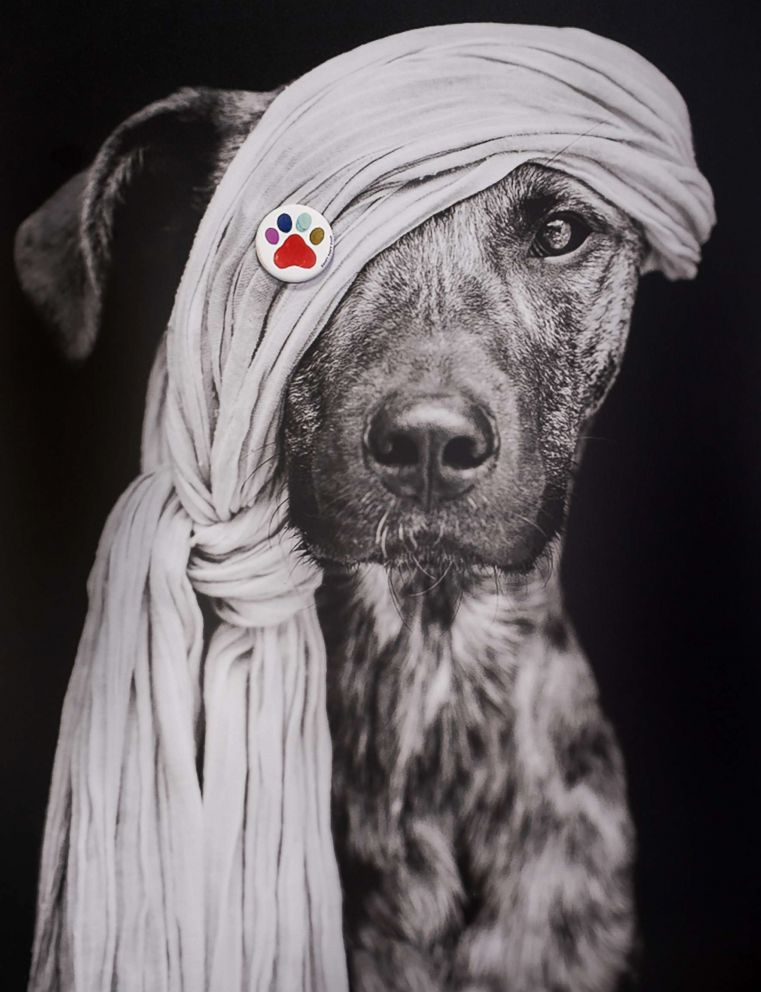 PHOTO: Elke wears a pin from Pincause in support of The Humane Society of the United States Stop Puppy Mills campaign.