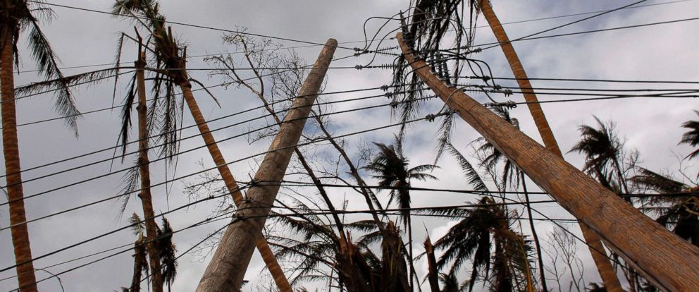 PHOTO: Downed power line poles and damaged palm trees are seen in the aftermath of Hurricane Maria in Humacao, Puerto Rico, Oct. 2, 2017.