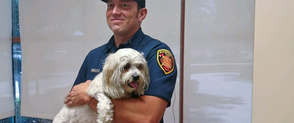 PHOTO: Firefighter Matt Smith holds a Shih Tzu dog named Jack that he rescued from a burning home and resuscitated on July 19, 2017 in Bakersfield, Calif.