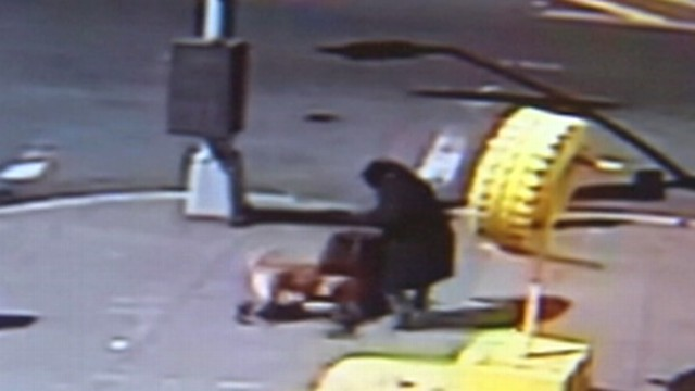 Video: Childs Dog-Attack Rescue Caught on Tape
