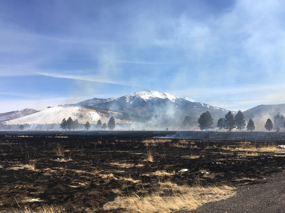 Drone blamed for national forest wildfire that scorches 35 acres in Arizona