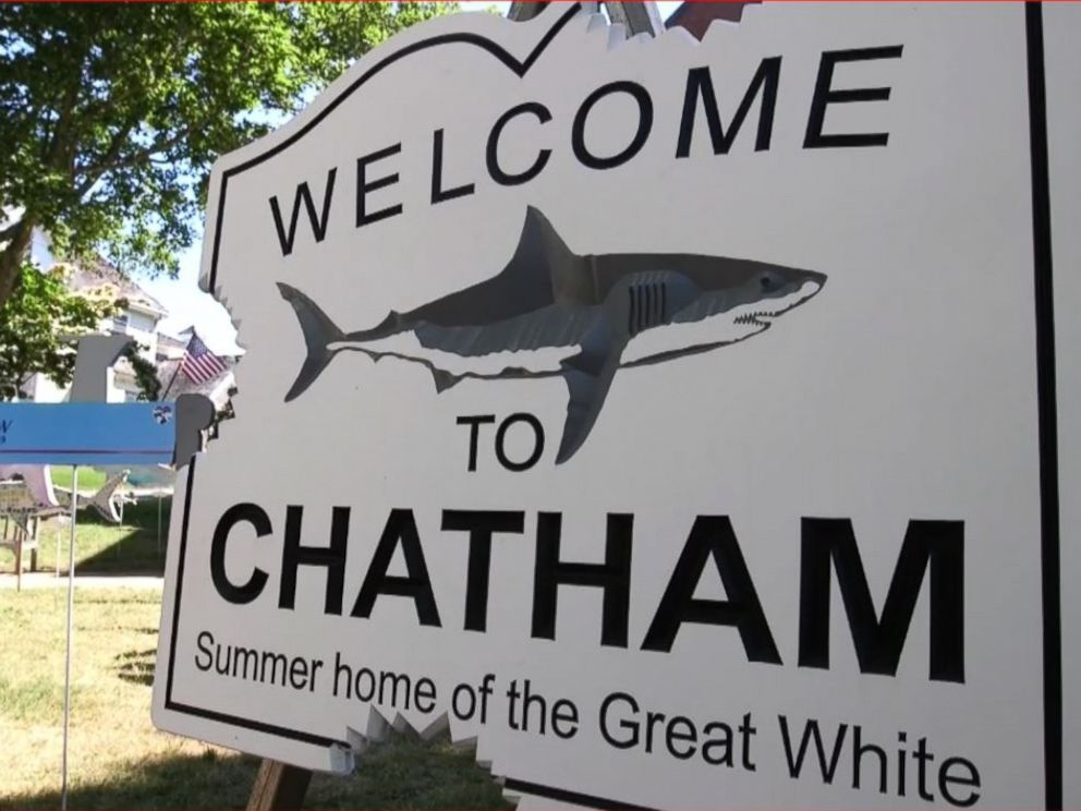 PHOTO: A sign in front of the library in the center of Chatham, Massachusetts proclaims Welcome to Chatham. Summer home of the Great White.