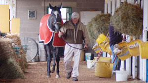 Trackside Training Stables