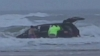 Dramatic Video Shows Van Roll Into the Ocean