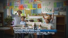 VIDEO: Teaching Farming To Students In New York City
