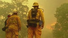 VIDEO: Devastating Wildfires Spread Out West