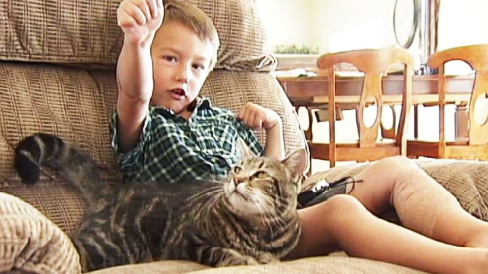 VIDEO: Cat Saves Little Boy From Being Attacked by Neighbors Dog