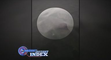 VIDEO: Instant Index: Family Encounters Great White Shark Off the Coast of Cape Cod