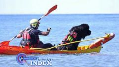 VIDEO: Instant Index: Meet Bruno the Lifeguard Dog
