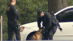 VIDEO: Attack Dogs Take Aim at White House Intruder