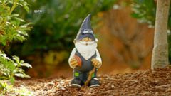 VIDEO: Garden Gnomes Excellent Adventure to the Super Bowl