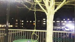 VIDEO: WN 04/01/15: Noose Found Hanging at Duke University