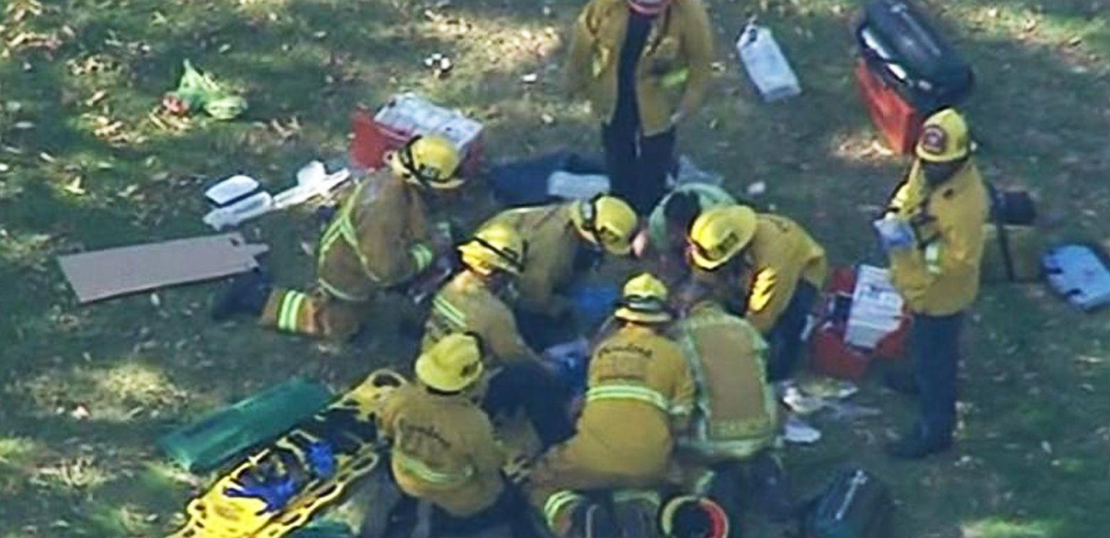 VIDEO: 8 Children Injured When Tree Falls Outside California Museum