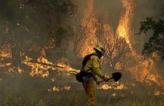 VIDEO: Lightning Sparks Dozens of Wildfires in California