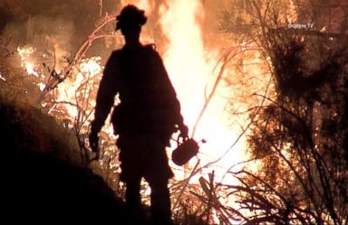 VIDEO: WN 08/02/15: California Wild Fires Force 12,000 to Evacuate