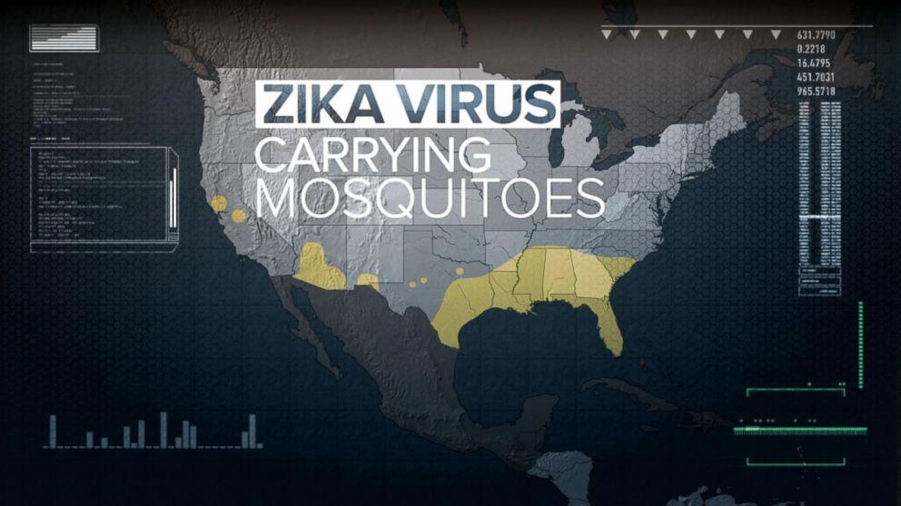 Good Morning America Zika Virus : New fears about the zika virus video abc news
