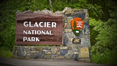 VIDEO: Index: Deadly Grizzly Bear Attack at Glacier National Park