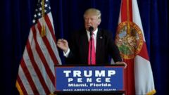 VIDEO: Donald Trump Appears to Invite the Russians to Hack Hillarys Emails
