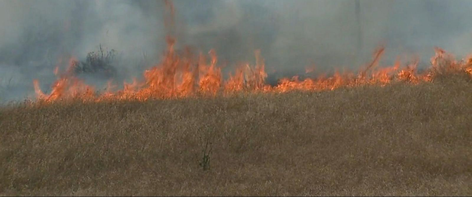 VIDEO: San Diego wildfire under investigation as possible arson