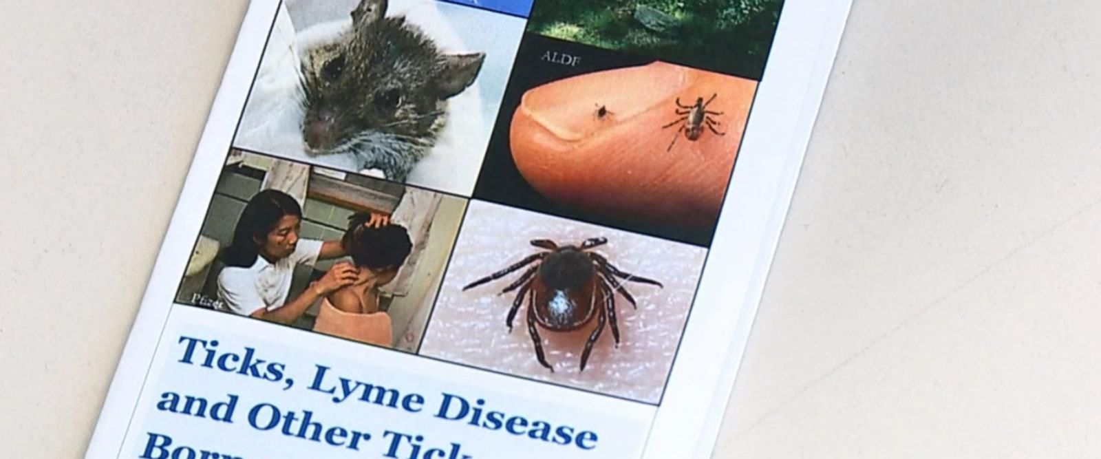 VIDEO: Health officials warn this is the worst year for ticks