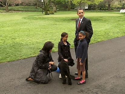 VIDEO: The Obama Family unveils Bo Obama.
