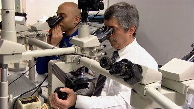 Experimental Cancer Treatment Offers Hope Video  Abc News. Center For Immigration Studies. How To Install Tile On Concrete. Eastern Community And Technical College. Online Gre Prep Course Laser Eye Color Change. Best Personal Finance Software. Health Information Management Degree. State Of Nevada Corporation Search. Symbol Wireless Barcode Scanner