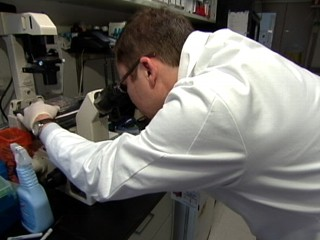 Watch: Experimental Cancer Treatment Offers Hope