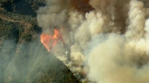 VIDEO: Wildfires in California