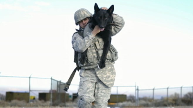 VIDEO: Team Six had K-9 backup when it took out Bin Laden.