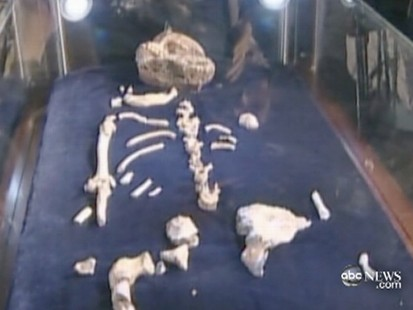 VIDEO: A paleontologists son may have discovered the missing link.
