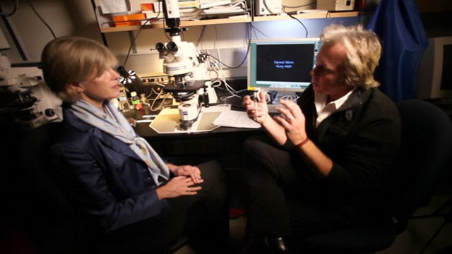 VIDEO: Dr. Cynthia Kenyon explains why a roundworm may hold the key to living longer.