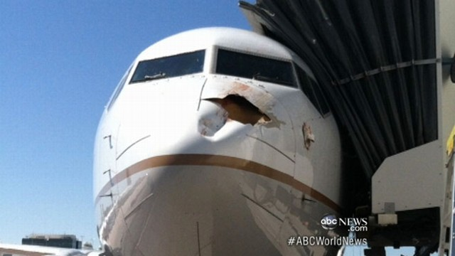 VIDEO: United Airlines jets fuselage punctured after bird hits nose in midair.