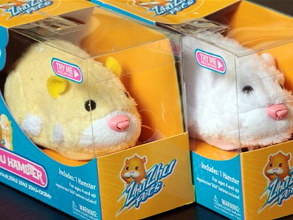 VIDEO: Zhu Zhu Pets Safe Despite Unsafe Claims