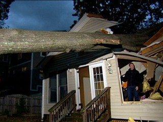 Watch: Danger of Falling Trees Lingers After the Storm
