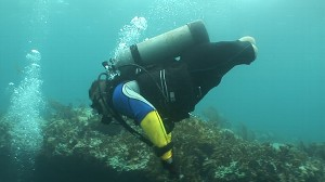 VIDEO: Scuba therapy for soldiers