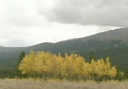 VIDEO: Aspen, Colo., Takes on Global Warming