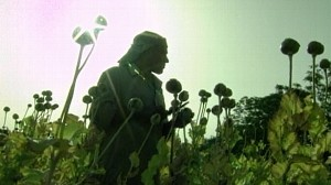 VIDEO: Kill or Capture drug trafficker policy in Afghanistan