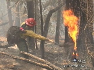 Watch: Firefighters Battle Wildfires in West