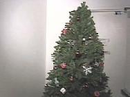 シアトル(Sea-Tac)国際空港クリスマス・ツリー撤去騒ぎ