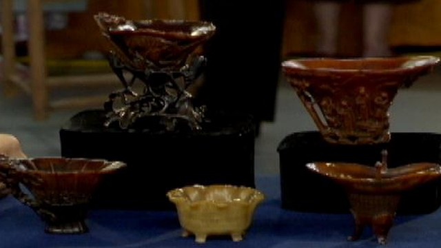 VIDEO: $1 milllion Rhino Horn cups are highest valued items ever on Antiques Roadshow